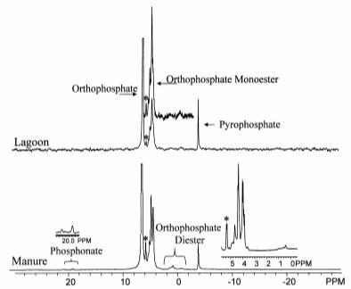 EDTA NMR Spectrum